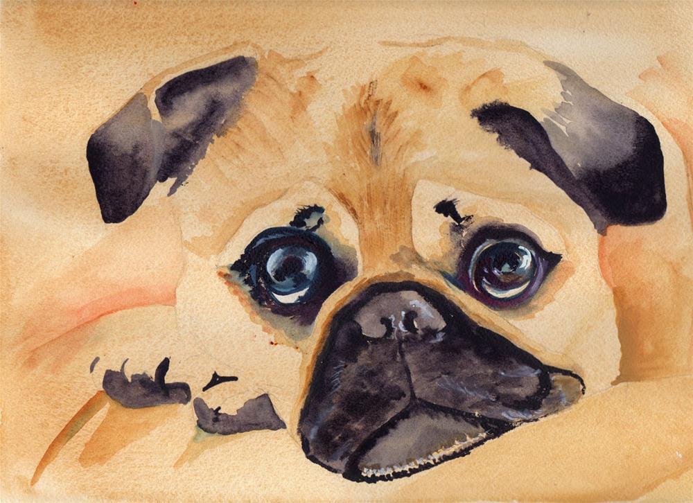 """""""PUG DOG"""" original fine art by Bunny Griffeth"""