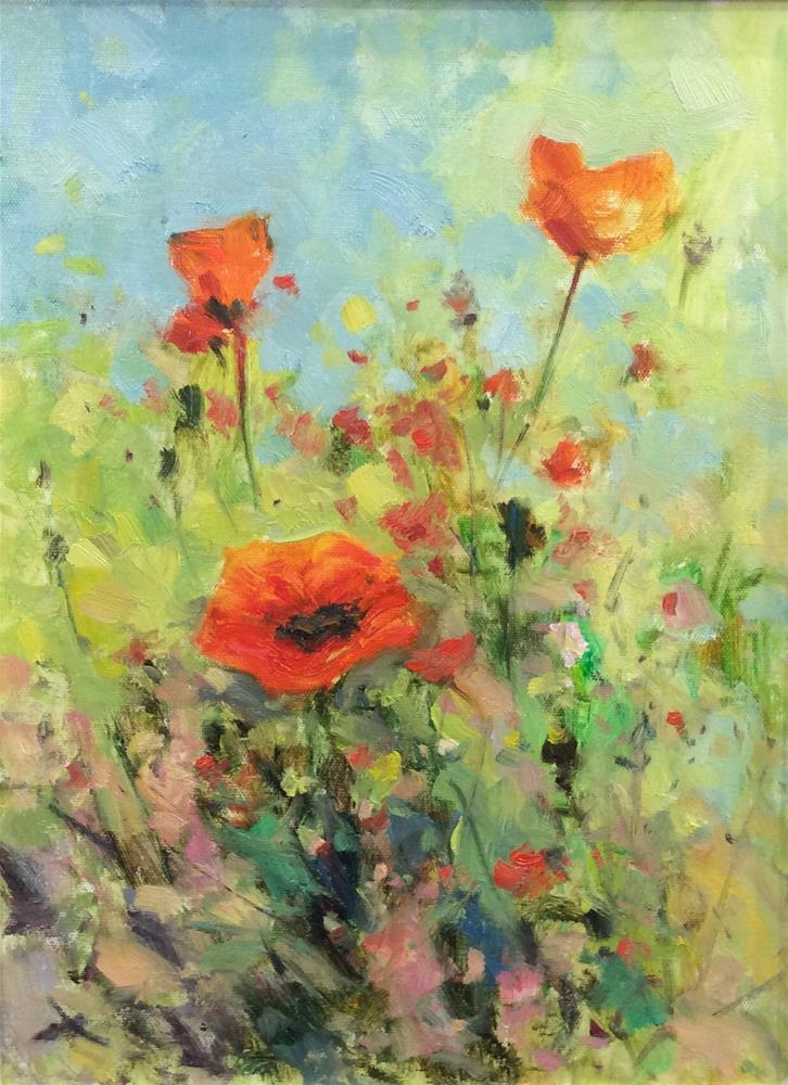 """""""Poppies in the Meadow"""" original fine art by John Shave"""