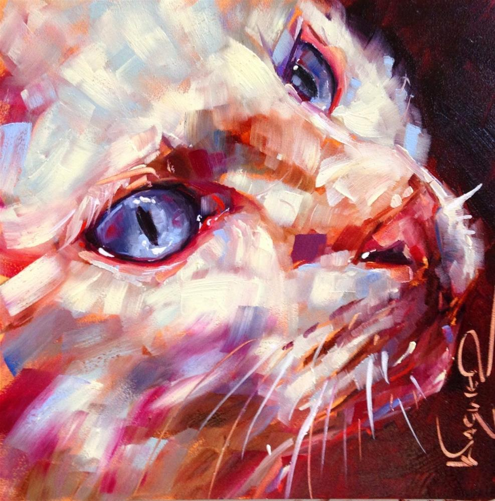 """""""ORIGINAL CONTEMPORARY WHITE CAT PAINTING in OILS by OLGA WAGNER"""" original fine art by Olga Wagner"""