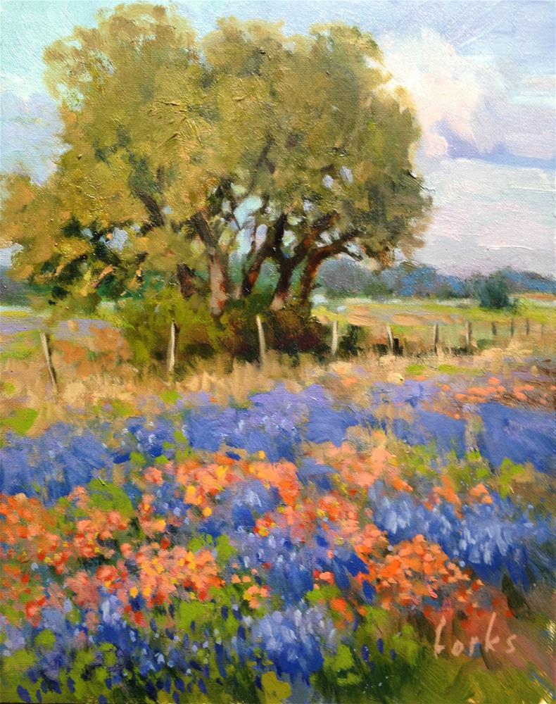 """""""Fence Line"""" original fine art by David Forks"""