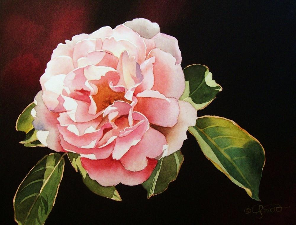 """Pink Rose II"" original fine art by Jacqueline Gnott, TWSA, WHS"