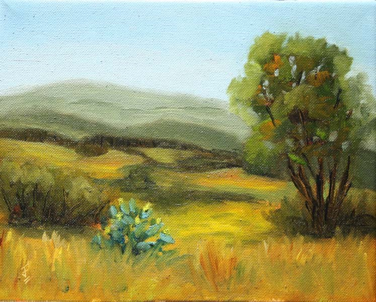 """""""Hill Country Study 2"""" original fine art by Jane Frederick"""