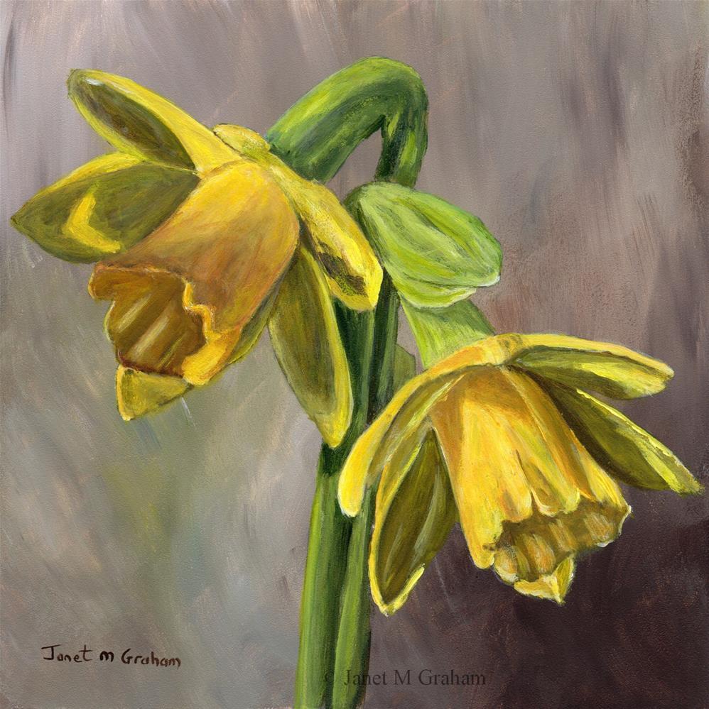 """Daffodils"" original fine art by Janet Graham"