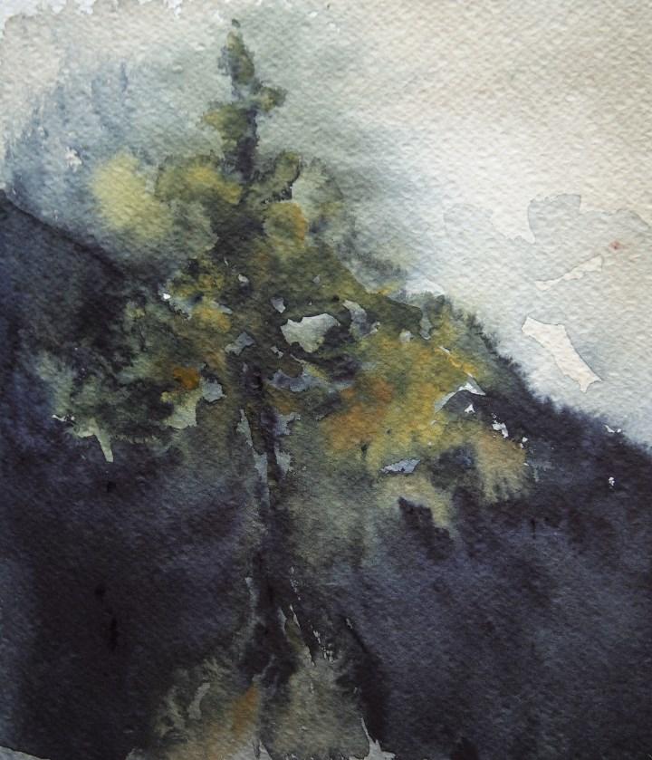 """Winter Pine"" original fine art by Amy Bryce"