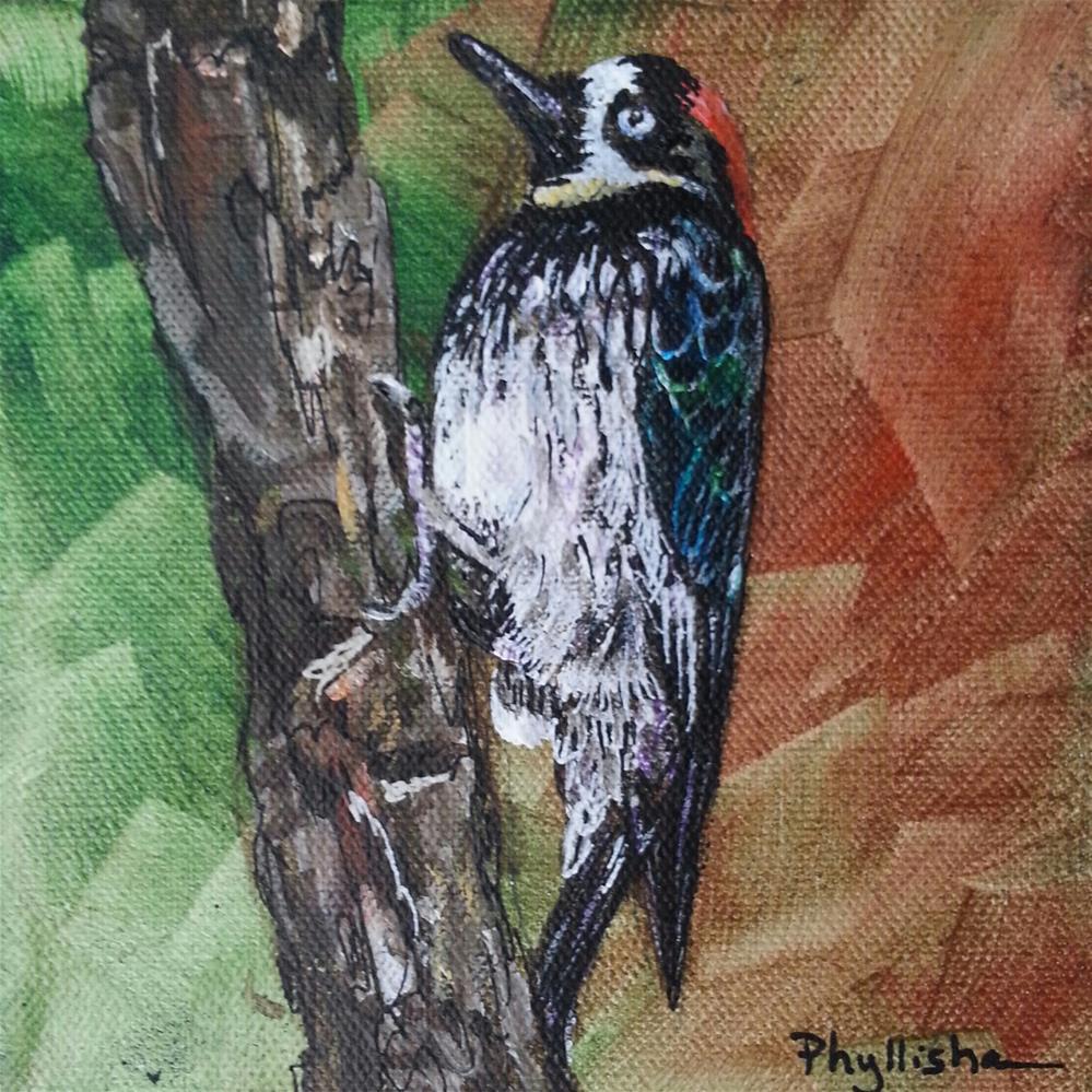 """Acorn Woodpecker"" original fine art by Phyllisha Hamrick"