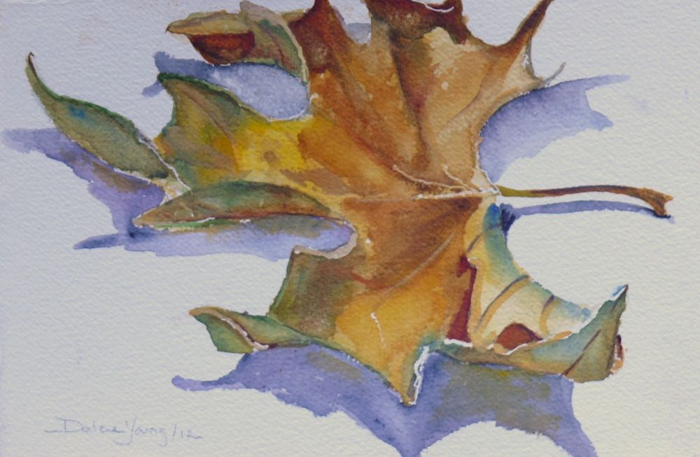 """556 Maple Leaf Study"" original fine art by Darlene Young"