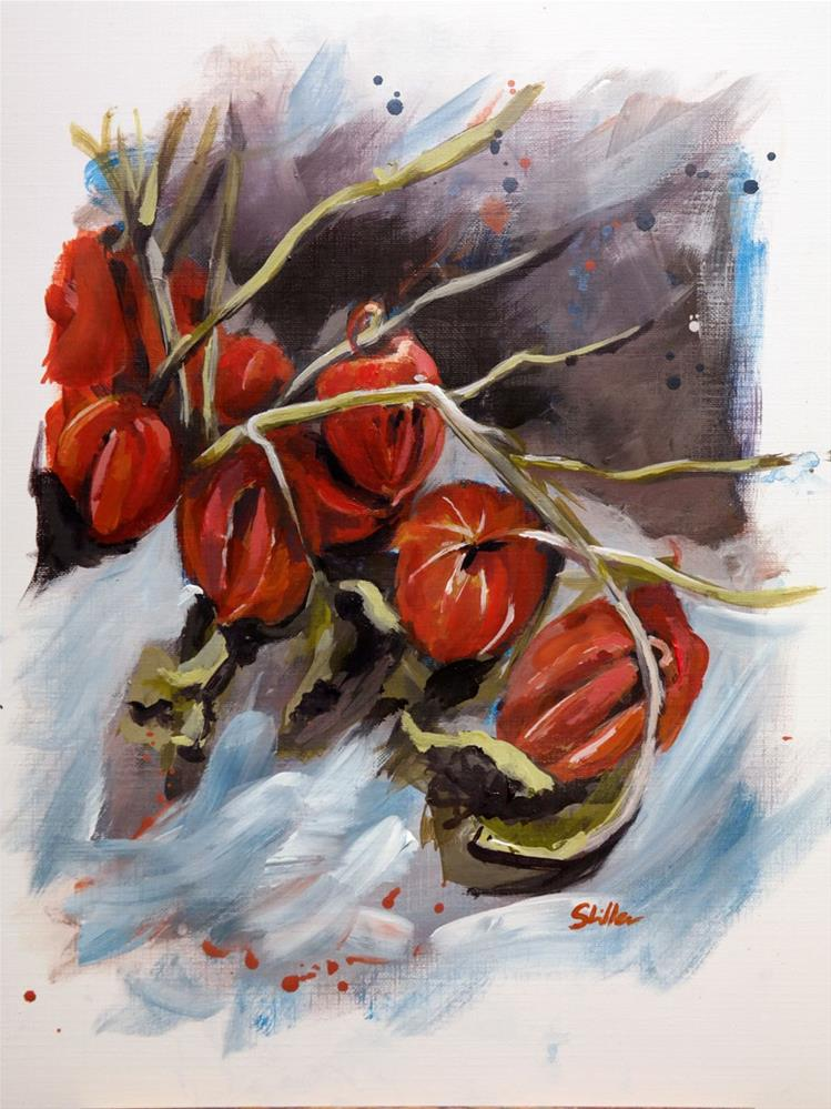 """1627 Physalis"" original fine art by Dietmar Stiller"