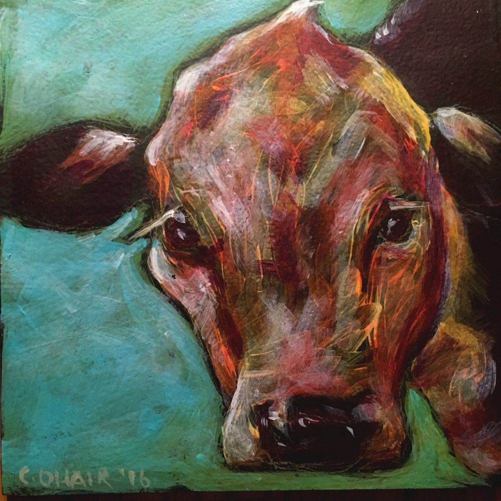 """""""Cow 1 - SOLD"""" original fine art by Colleen OHair"""