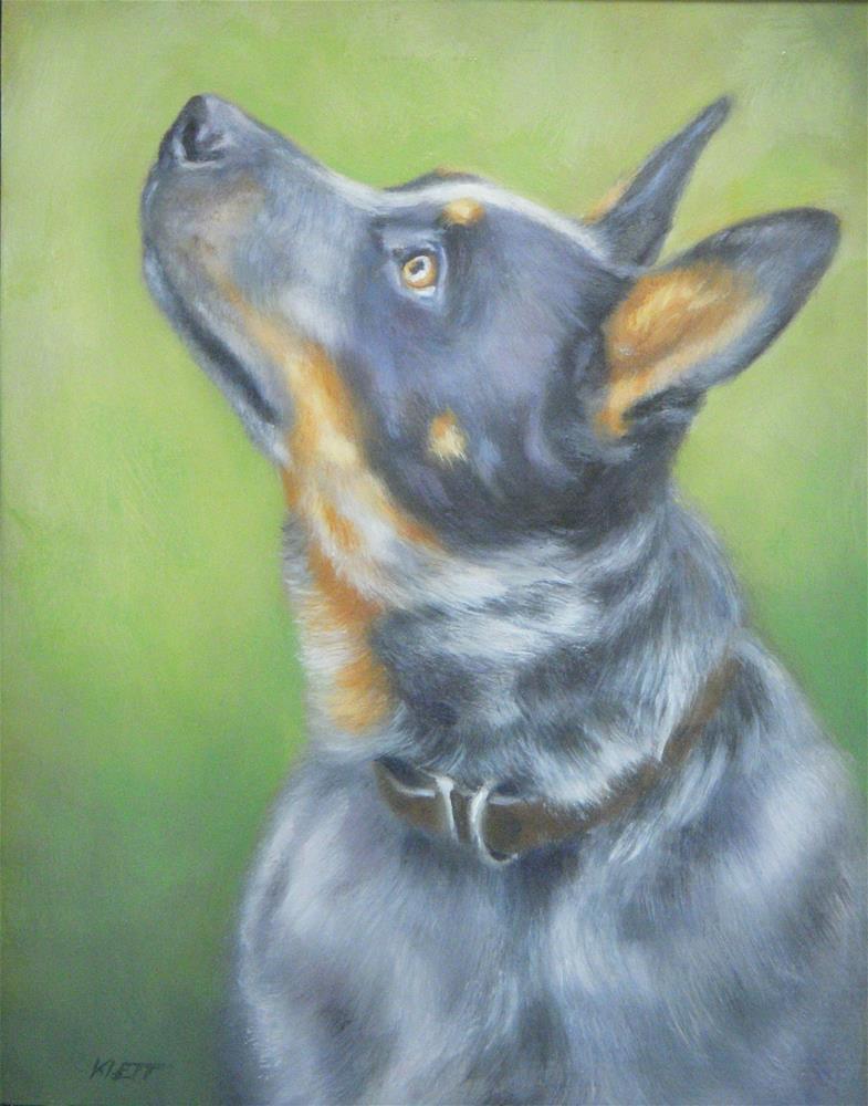 """Australian Working Cattle Dog"" original fine art by Tracy Klett"