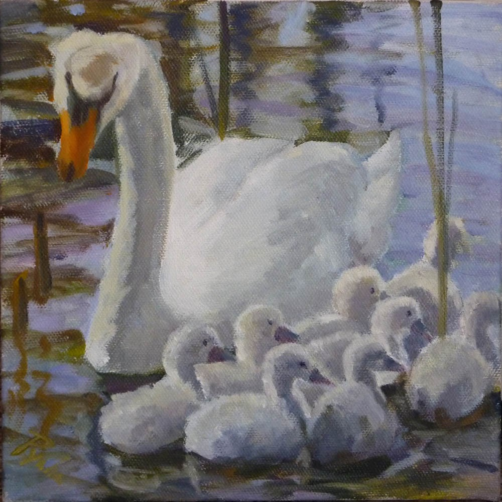 """Swan Family"" original fine art by Mary Pyche"