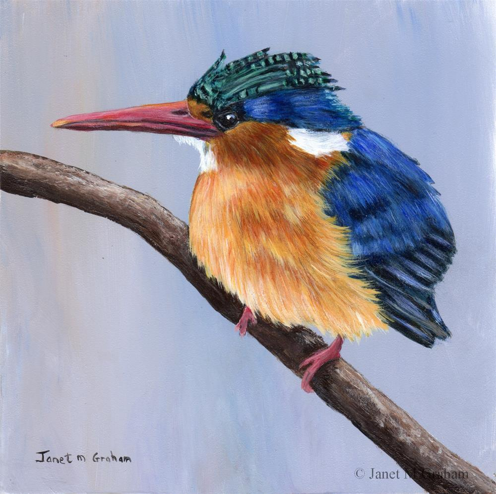 """Malachite Kingfisher"" original fine art by Janet Graham"