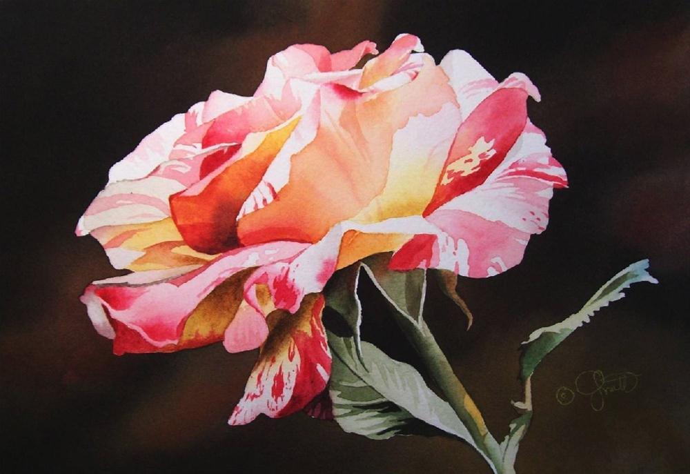 """Rainbow Rose"" original fine art by Jacqueline Gnott, TWSA, WHS"