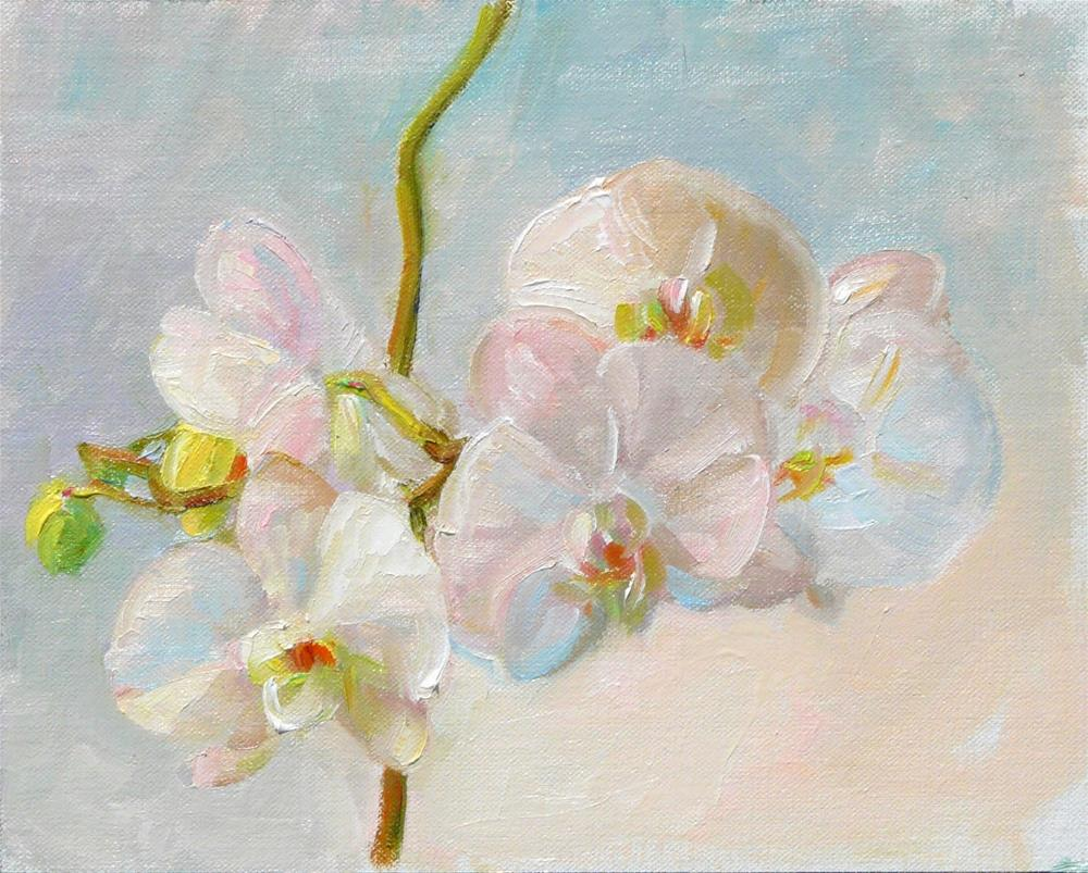 """Orchid Study in White,still life,oil on linen,8x10,price$300"" original fine art by Joy Olney"