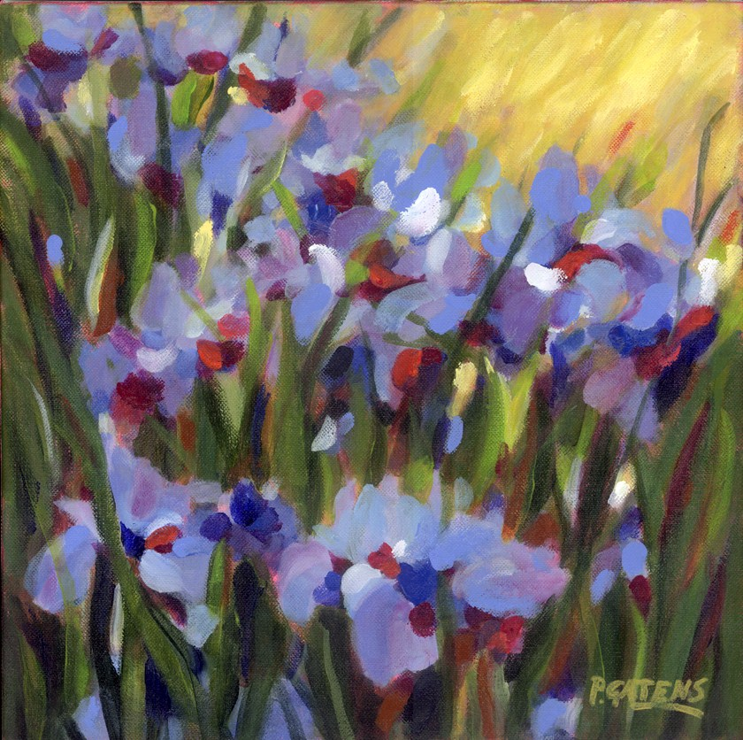 """Siberian Blue Iris"" original fine art by Pamela Gatens"
