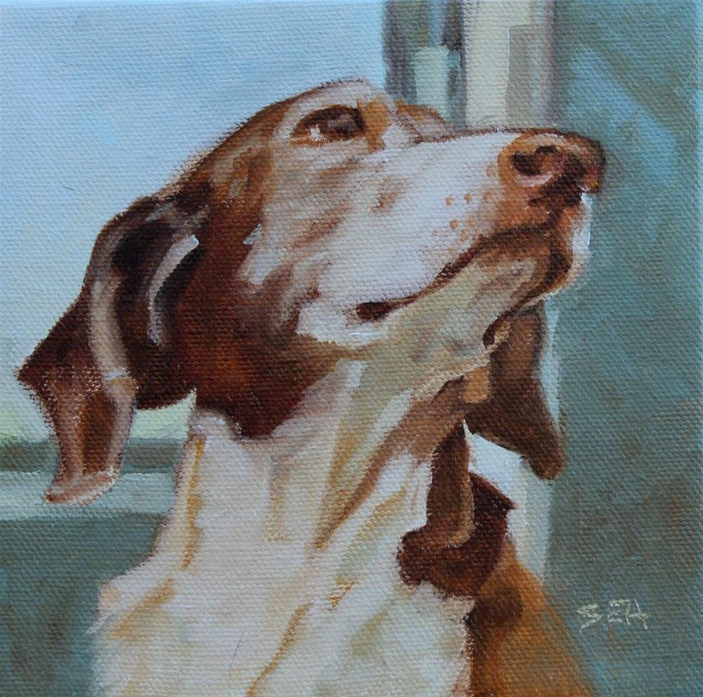 """""""May I please?"""" original fine art by Susan Ashmore"""