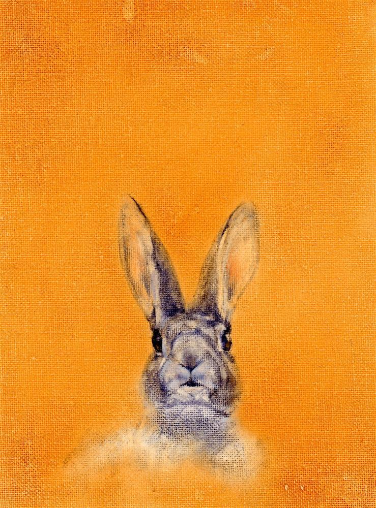 """Surprise ! Study"" original fine art by Susanne Billings"