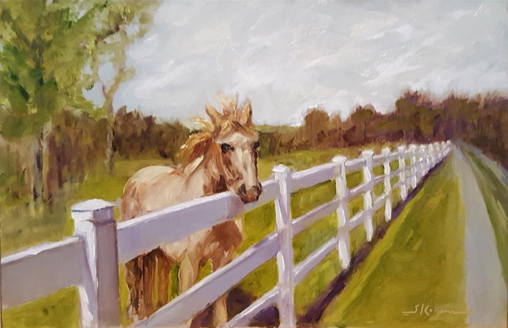 """Fenced In"" original fine art by Shelley Koopmann"