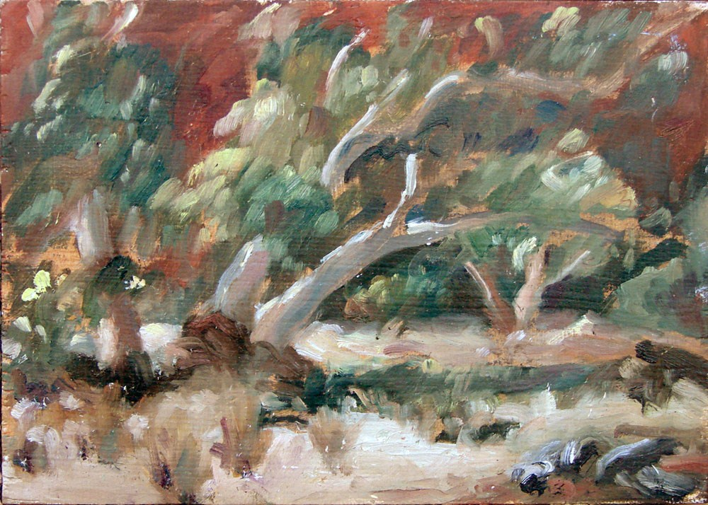 """Ruby Gap - River Bed"" original fine art by Myriam Kin-Yee"