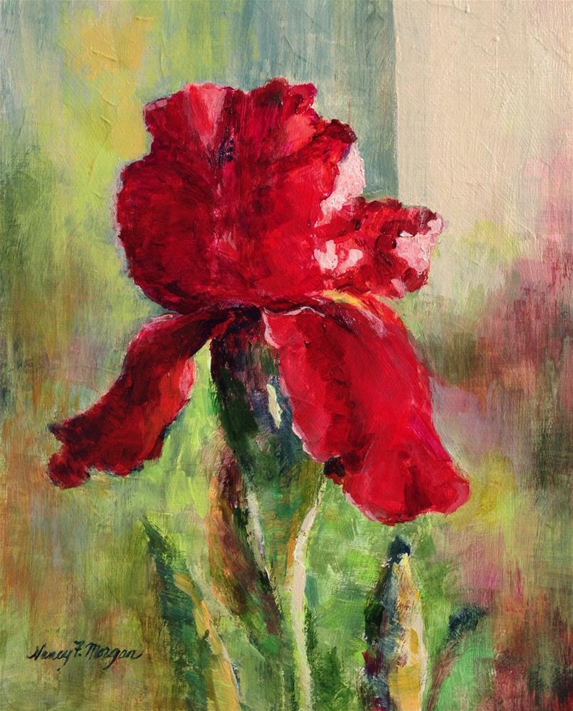 """Red Iris"" original fine art by Nancy F. Morgan"