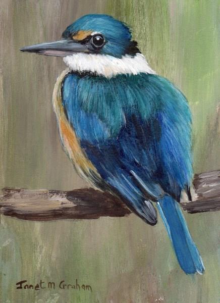 """Sacred Kingfisher ACEO"" original fine art by Janet Graham"