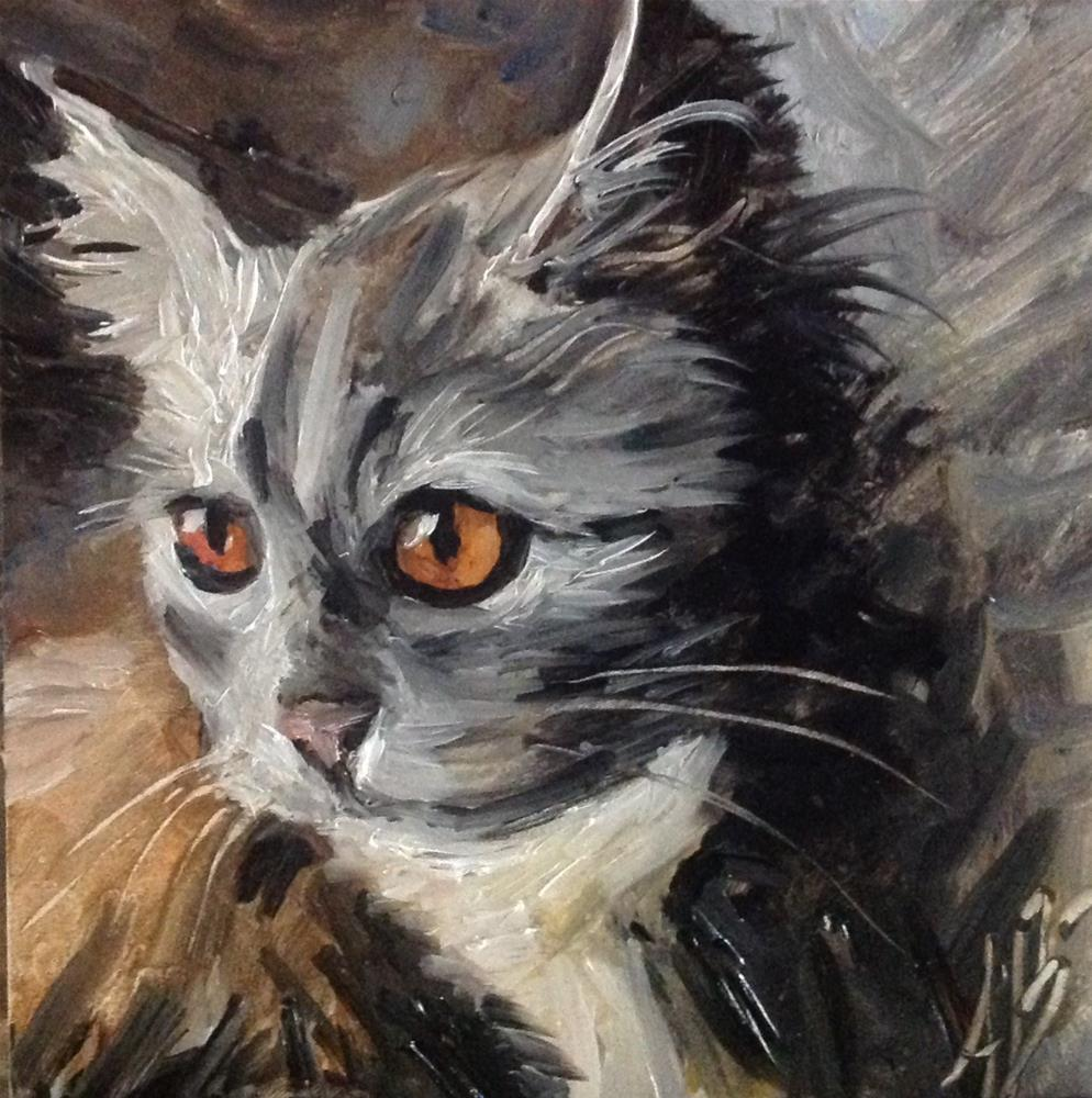 """Feral gray cat"" original fine art by Annette Balesteri"