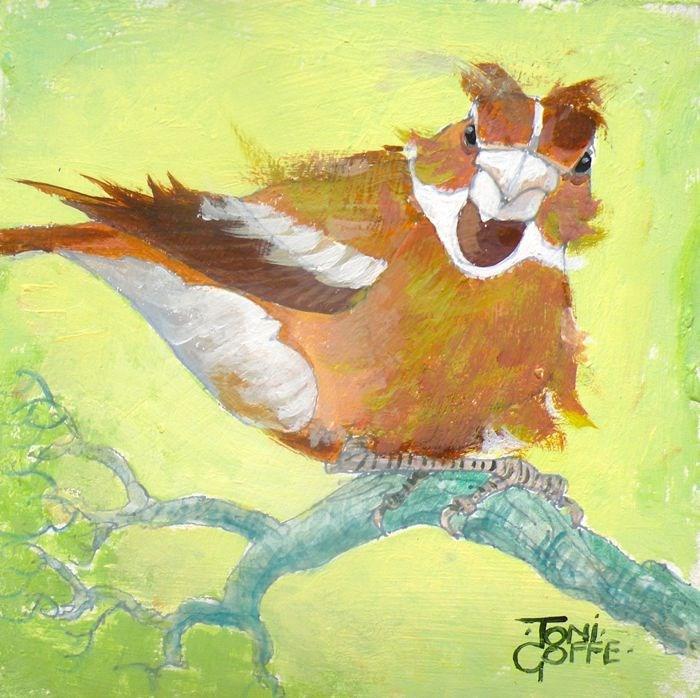 """""""Windy Hawfinch"""" original fine art by Toni Goffe"""