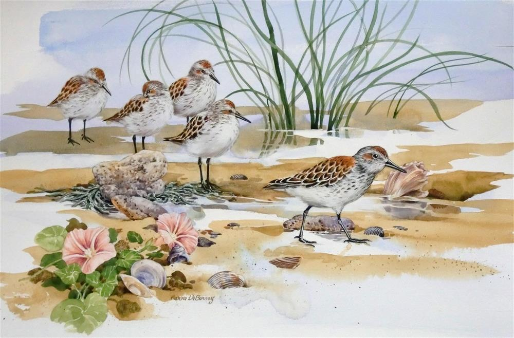 """Western Sandpipers"" original fine art by Jean Pierre DeBernay"