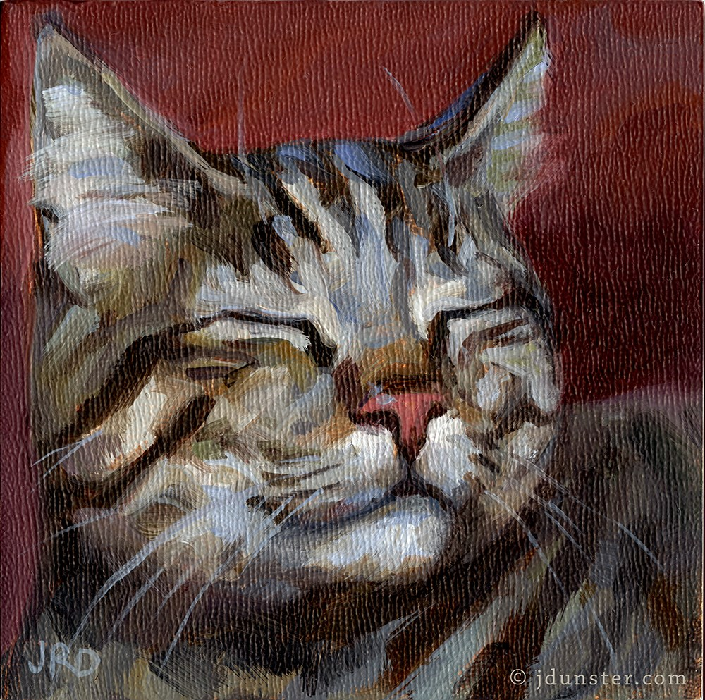 """Content Tabby"" original fine art by J. Dunster"