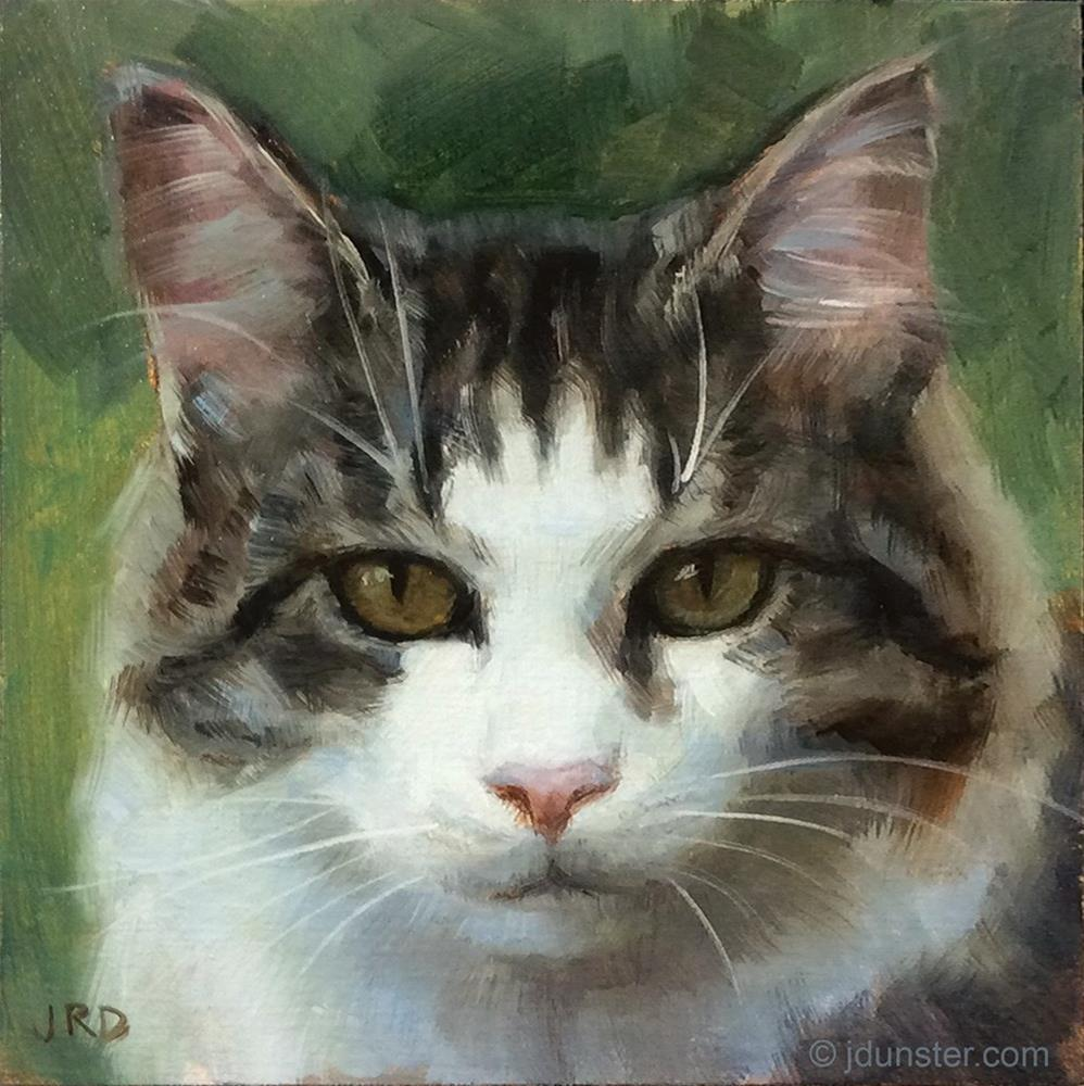 """Soft & Fluffy"" original fine art by J. Dunster"