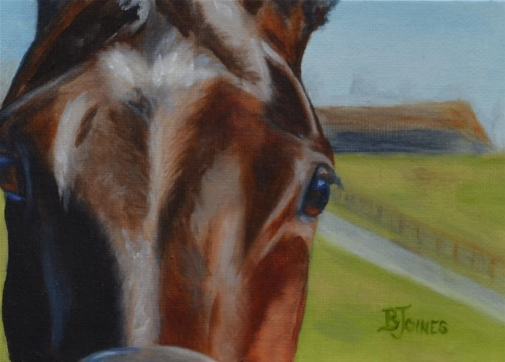 """Stare Down"" original fine art by Barbara Gillis Joines"