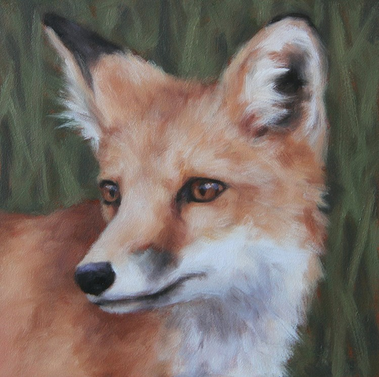 """Red Fox"" original fine art by Sarah Becktel"