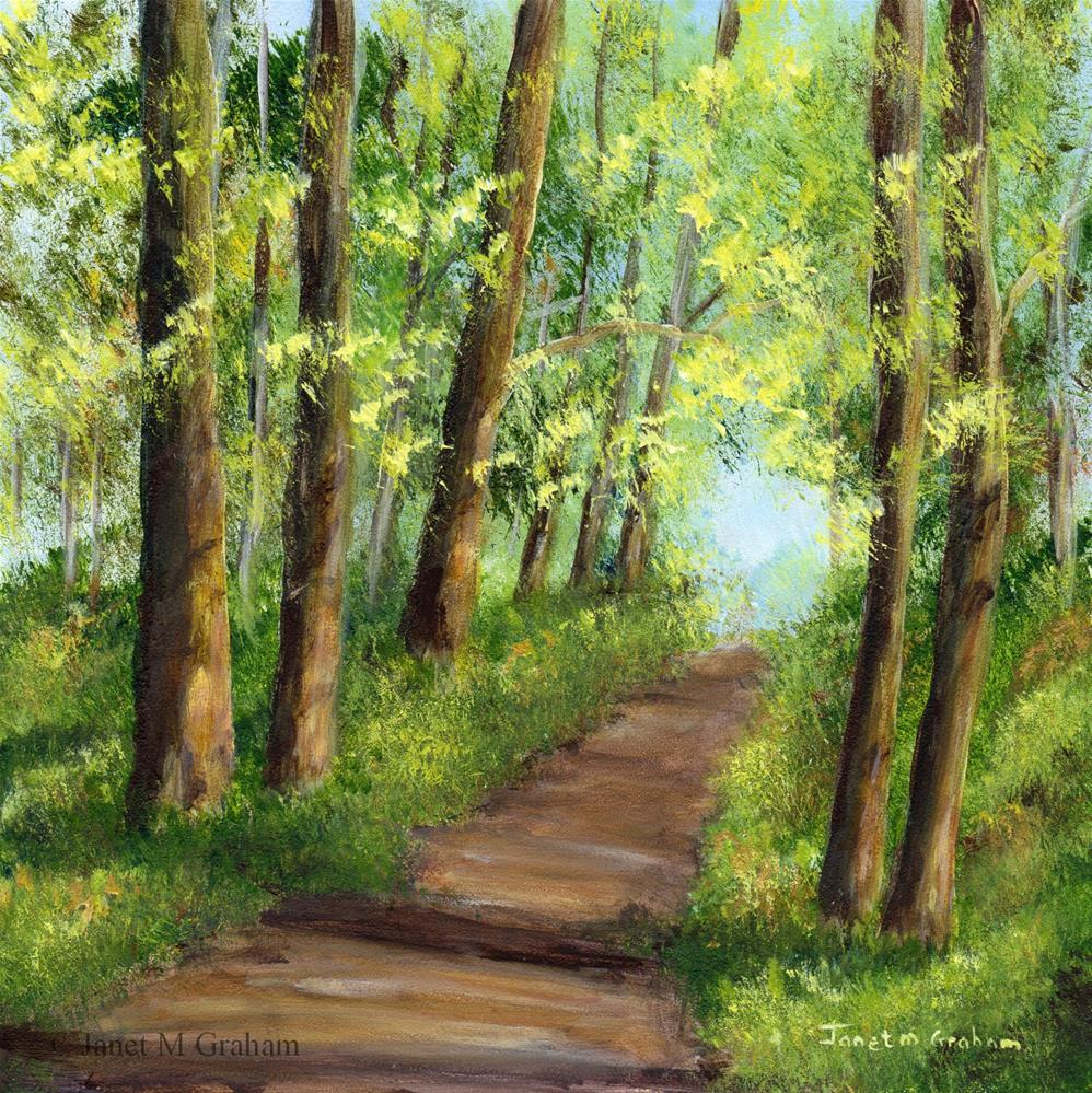 """Walk through the Woods"" original fine art by Janet Graham"