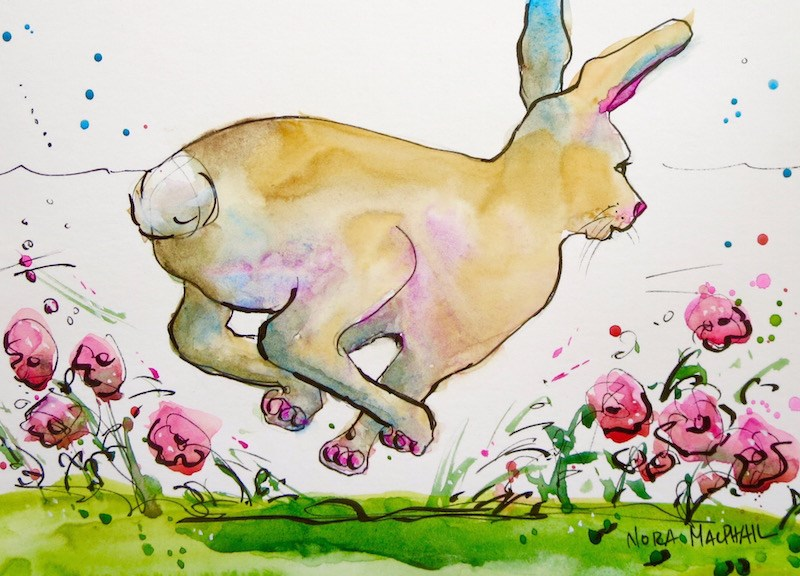 """swift"" original fine art by Nora MacPhail"