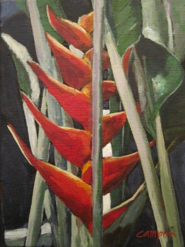 """Tropic Beauty (Heliconia Caribea Jaquini)"" original fine art by Diane Campion"
