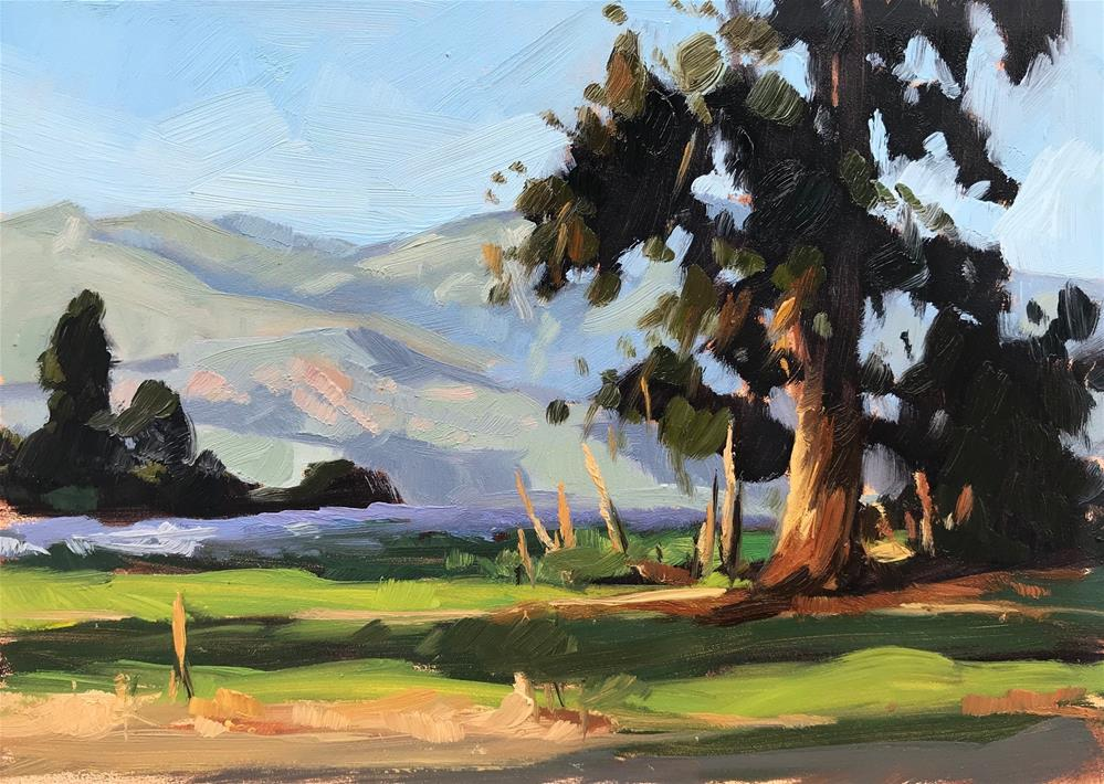"""Carpinteria Bluffs"" original fine art by Sharon Schock"