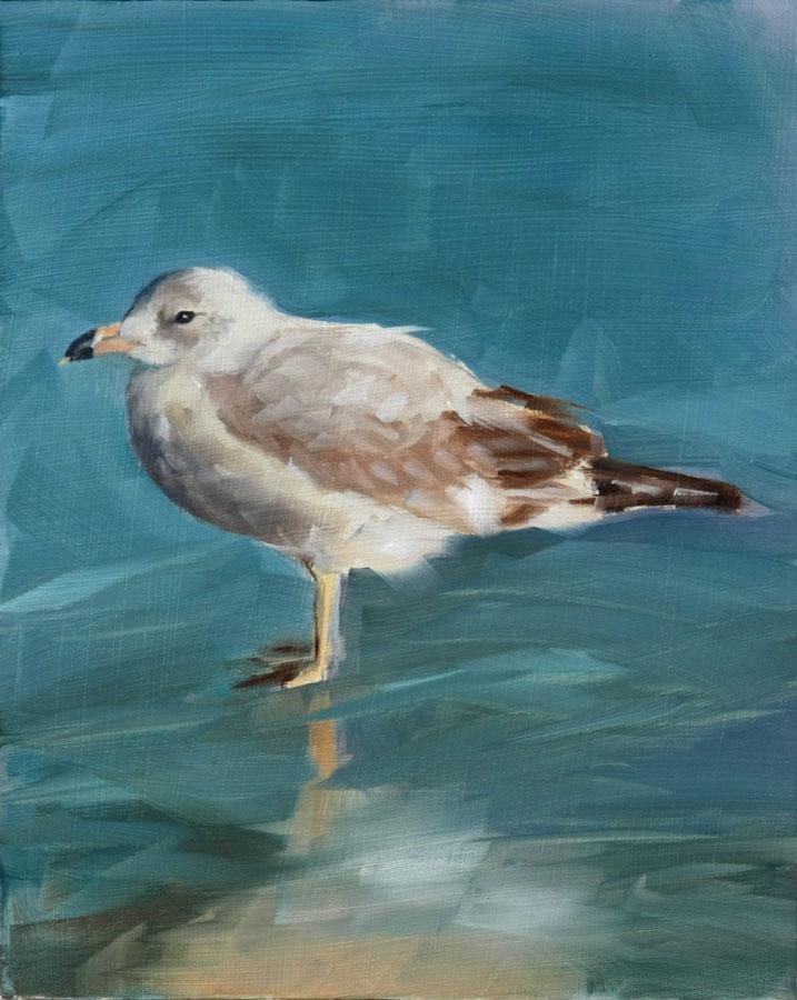 """Seagull Summer"" original fine art by Clair Hartmann"