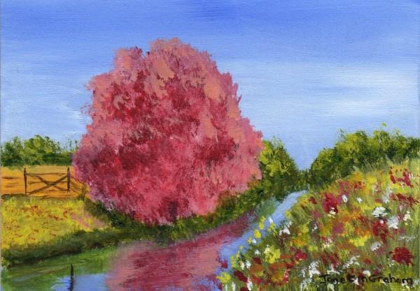 """Spring Fields ACEO"" original fine art by Janet Graham"
