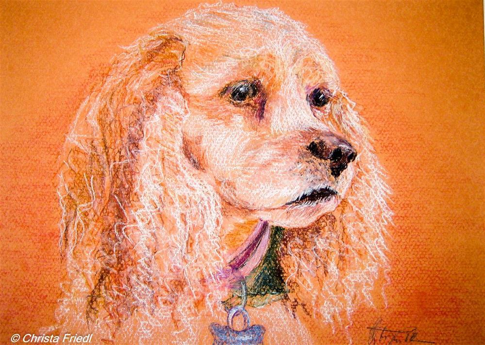 """Sandy"" original fine art by Christa Friedl"