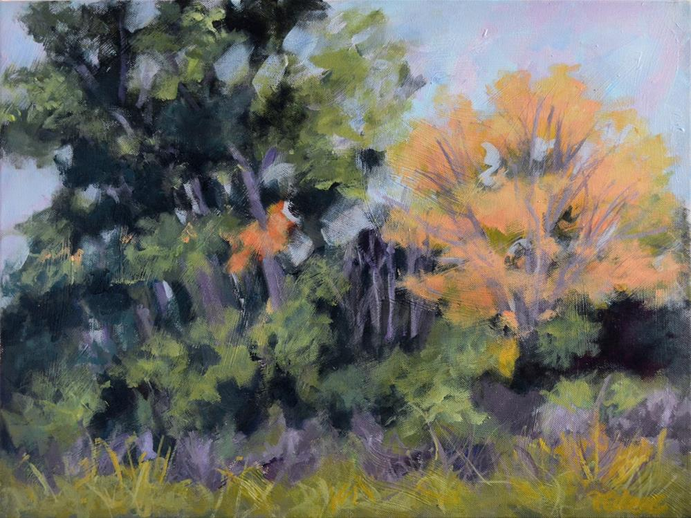 """Trail Trees"" original fine art by Pamela Gatens"