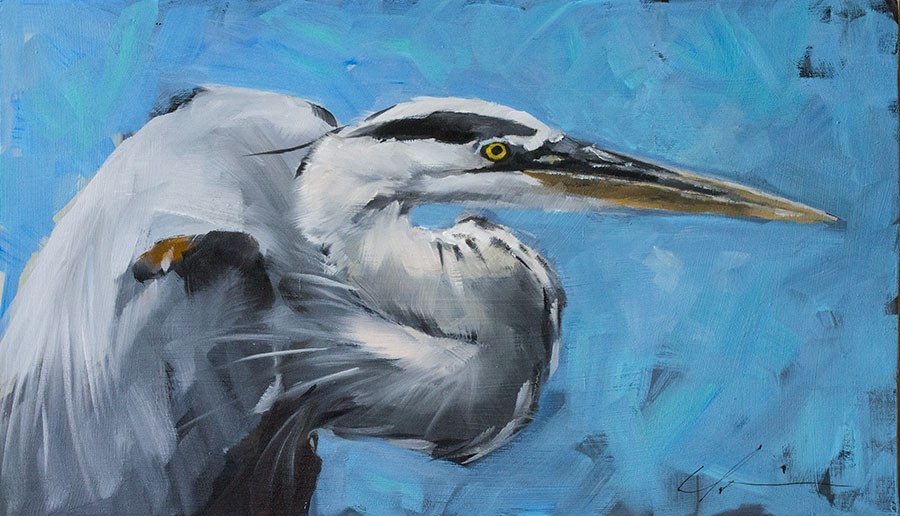 """Great Blue Heron"" original fine art by Clair Hartmann"