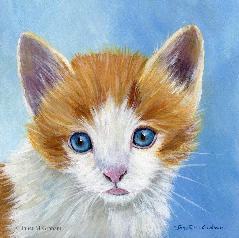 """Kitten"" original fine art by Janet Graham"