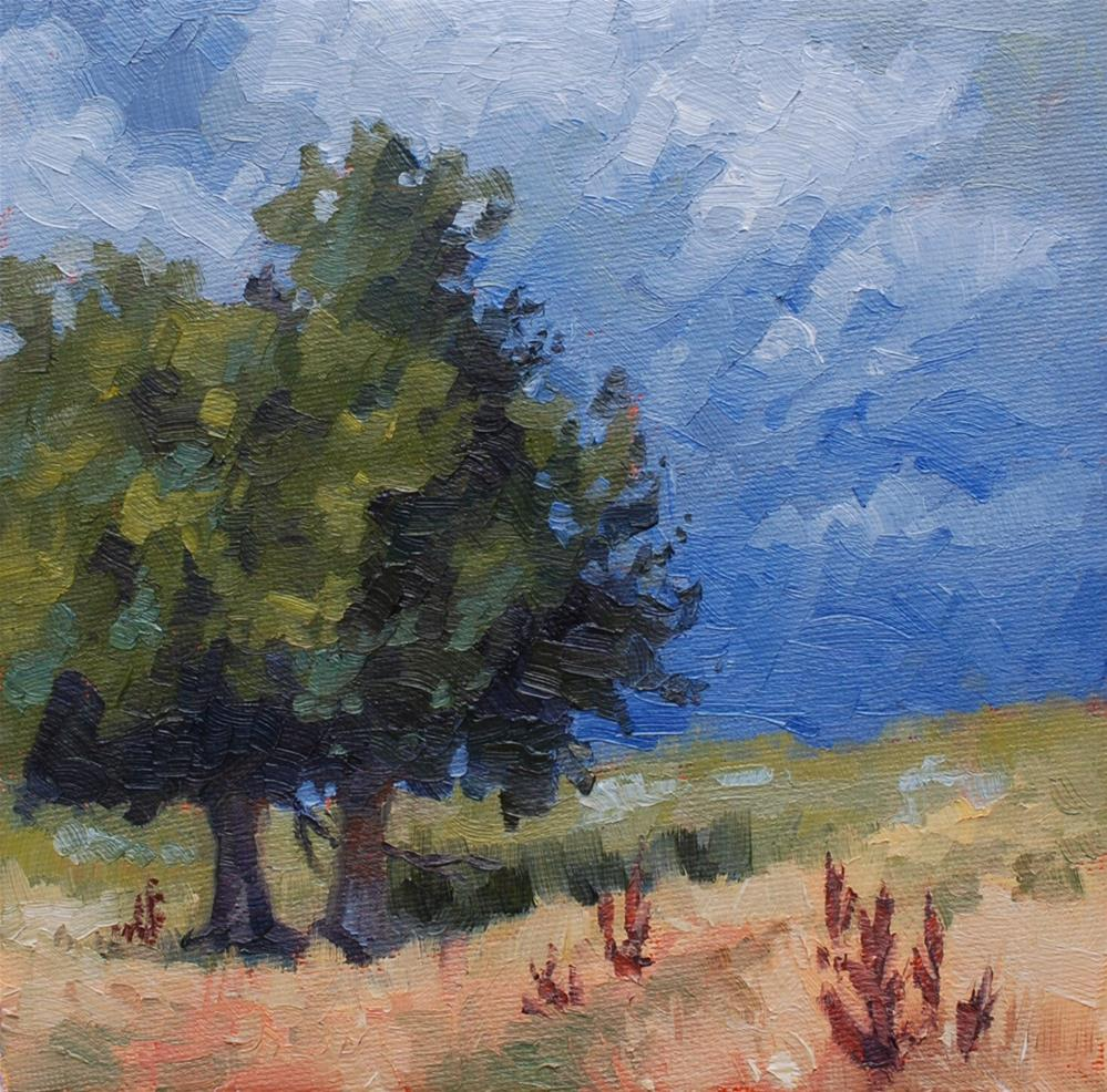 """The Family Ranch"" original fine art by Susan McManamen"