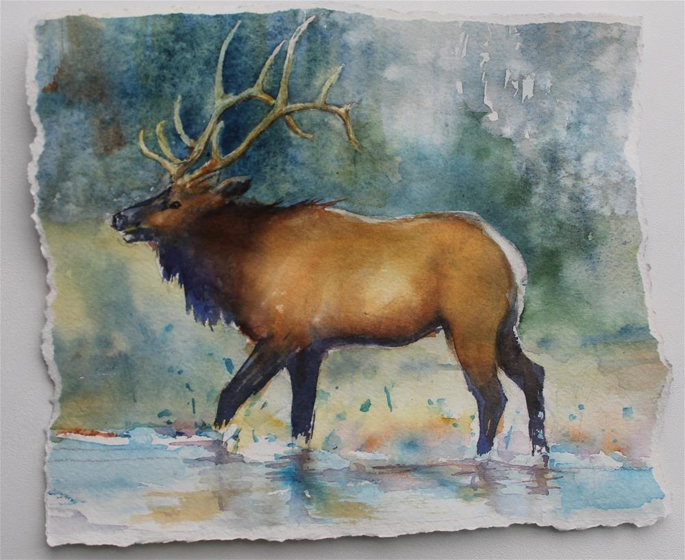 """Song of the Elk"" original fine art by Colleen Drury"
