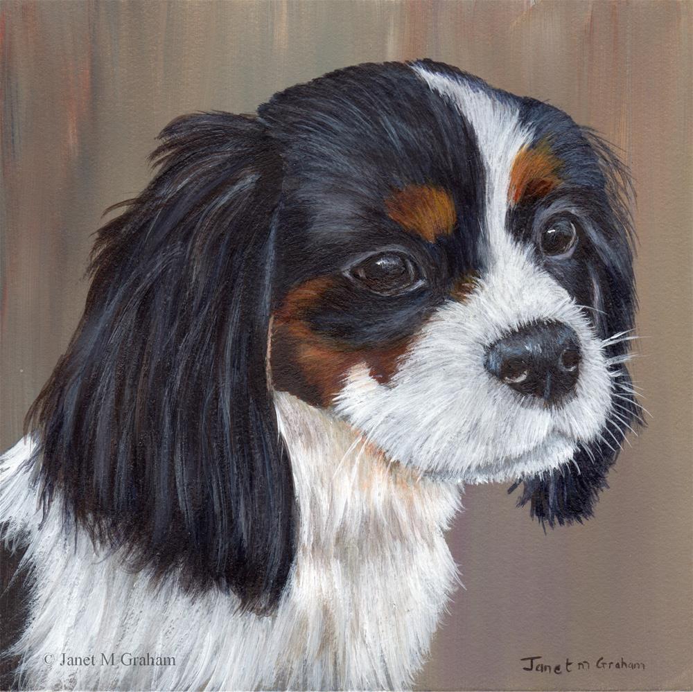 """Cavalier King Charles Spaniel"" original fine art by Janet Graham"