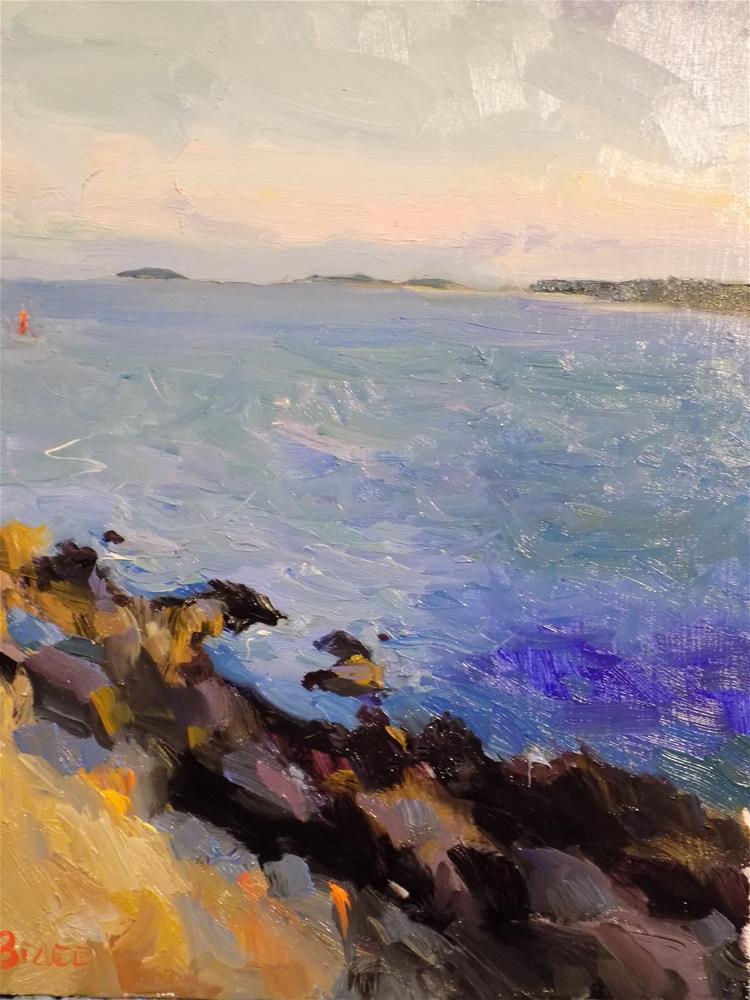 """On The Rocks Acadia"" original fine art by Rita Brace"