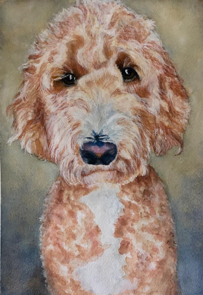 """Goldendoodle"" original fine art by Melissa Gresham"