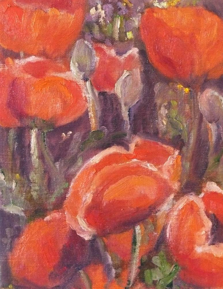 """734 James Bay Poppies"" original fine art by Darlene Young"