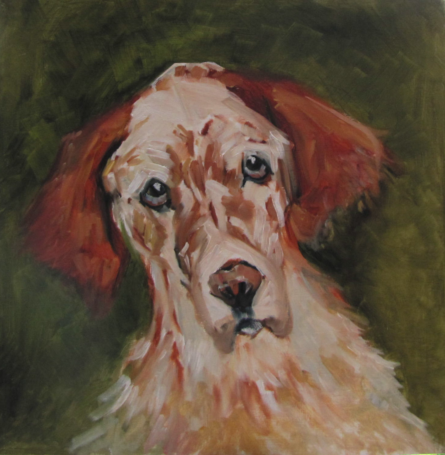 """""""Rusty  17.5x17.5  animal  oil sold #375"""" original fine art by Christine Holzschuh"""