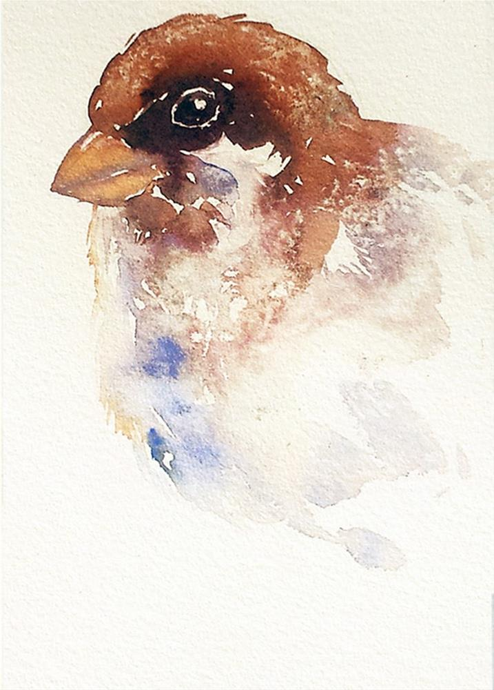 """Big Guy Sparrow"" original fine art by Arti Chauhan"