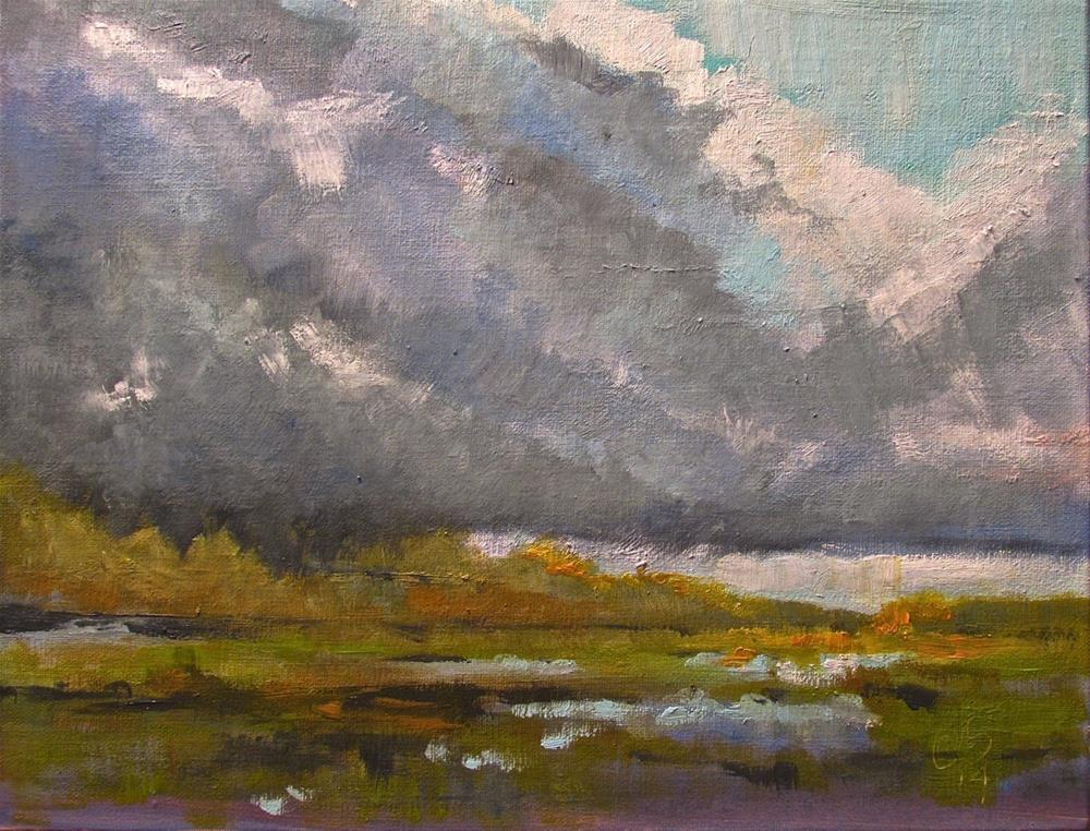 """Salt Marsh in Shadow"" original fine art by Aurelio Saiz"